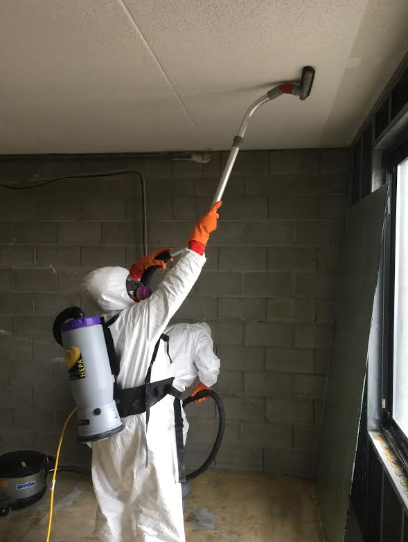 Mold Removal Clinton Township MI